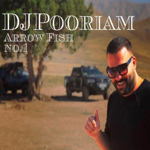 دانلود آهنگ جدید دیجی پوریام Arrow Fish No1