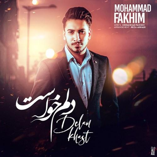 دانلود آهنگ جدید محمد فخیم دلم خواست