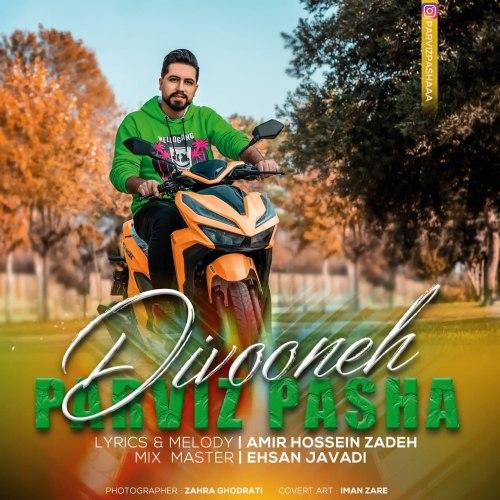 دانلود آهنگ جدید پرویز پاشا دیوونه